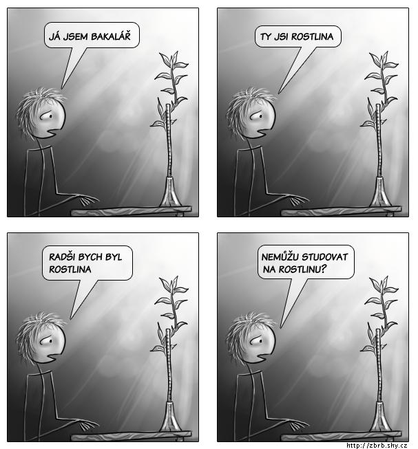 Bakalář a rostlina